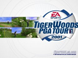 Tiger Woods wallpaper